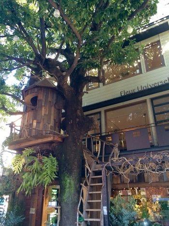 癒しの空間でのんびり時間を♪花屋+カフェが楽しめるお店4選