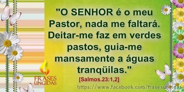 Salmos.23:1,2