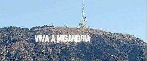 Viva a misandria