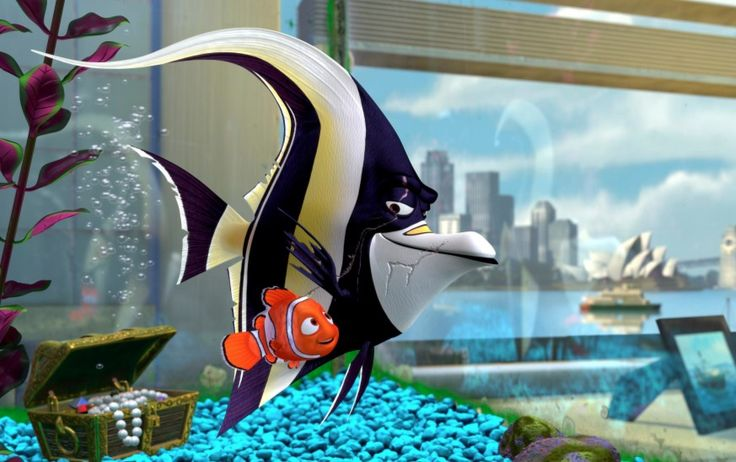 Finding Nemo Disney Walt Disney Movies Fish Animation: 1000+ Ideas About Finding Nemo Movie On Pinterest