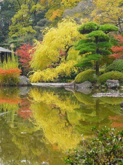 Garden in Kyoto, Japan.