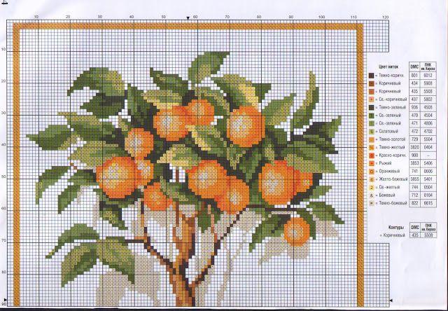 alberello arance1