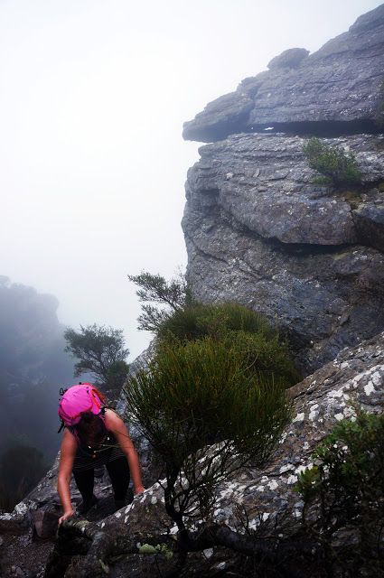 Talyuberlup Peak (Stirling Range National Park) ~ The Long Way's Better