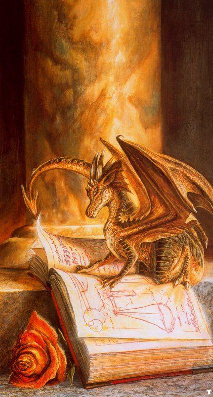 Drago che legge Librone