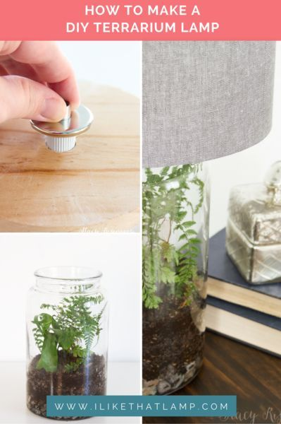 Featured On Not Just A Housewife Stacy\u0027s Easy DIY Terrarium Lamp