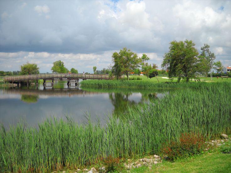 Il laghetto in Valle Altanea