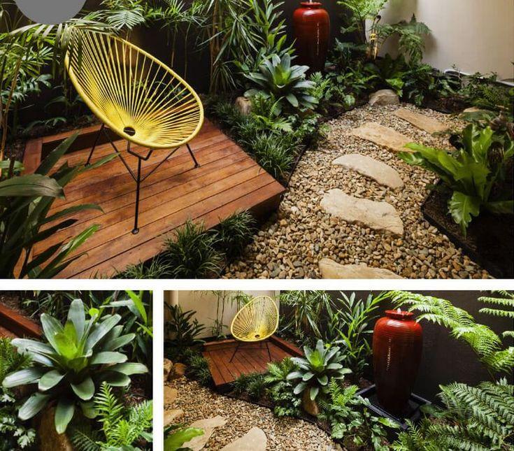 as plantas indicadas para jardim de inverno (espécies de sombra e de