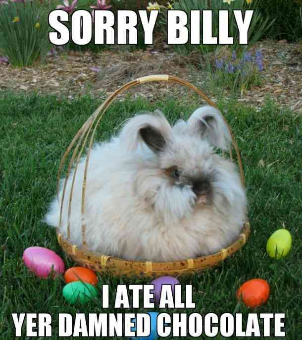 50 Funny Easter Memes To Share With Your Family Friends On Easter Sunday Easter Humor Funny Easter Memes Happy Easter Meme