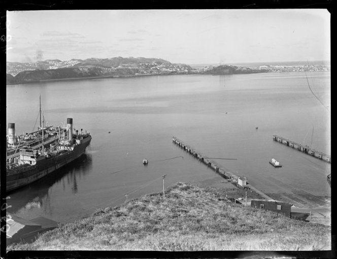 Evans Bay and Rongotai
