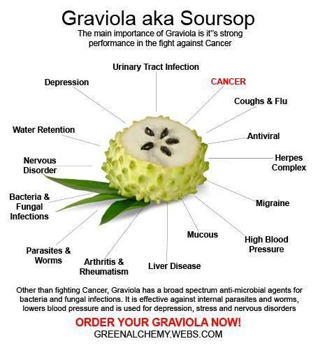 55 best Graviola
