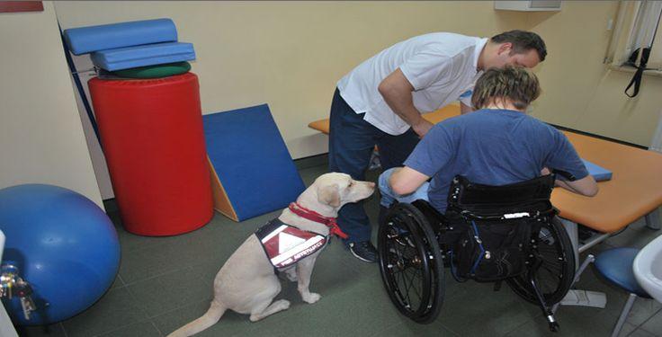 pecjalizujemy się w takich zabiegach jak: rehabilitacja w urazach czaszkowo-mózgowe, neurologiczna kraków, porażenie nerwu twarzowego , rehabilitacja w urazach rdzenia kręgowego, fizjoterapia kraków, rehabilitacja przy niedowładach, rehabilitacja po zatrzymaniu krążenia, rehabilitacja kraków, rehabilitacja neurologiczna,rehabilitacja, rehabilitacja funkcjonalna kraków.Oferta