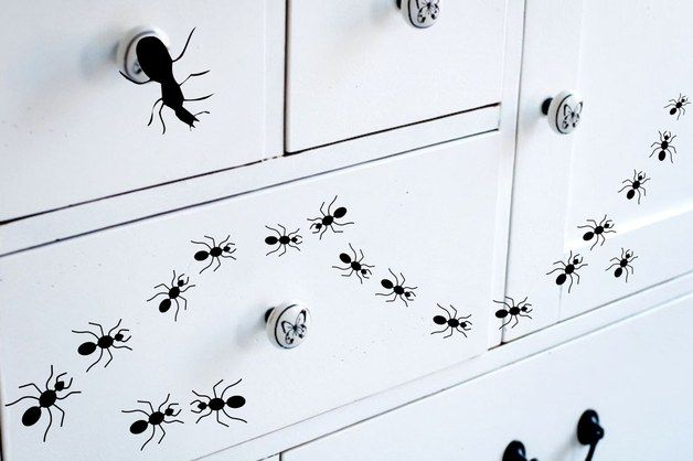 scary gifts at DaWanda Wall Stickers – Set of 19 Ants Vinyl Wall Decals Stickers Insects – a unique product by Demetrio via en.dawanda.com