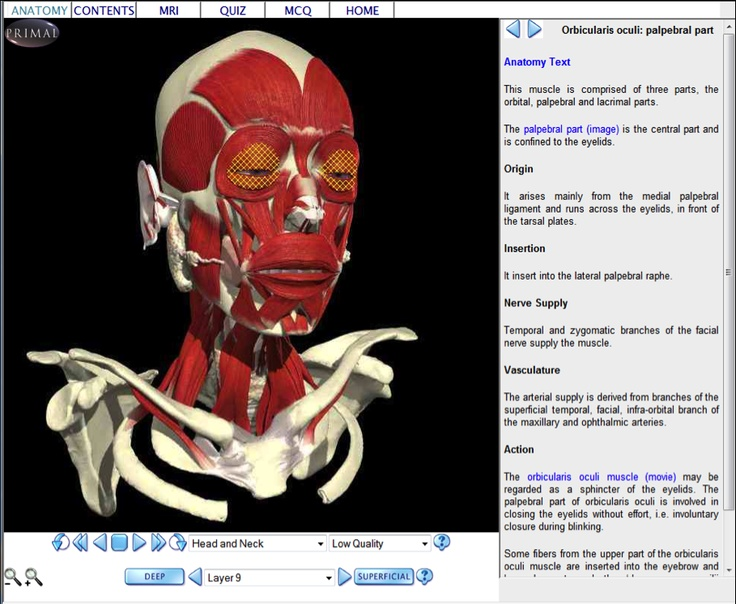117 Best Bank Deconstruction Anatomy And Tech Stuff Images On