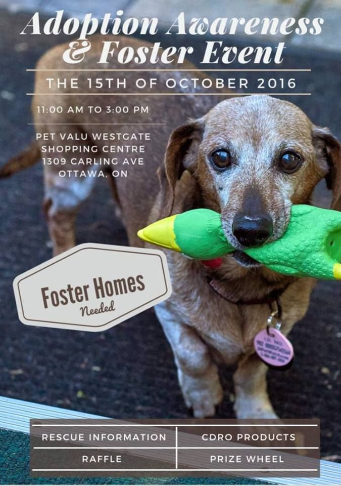 Ottawa Oct 15 2016 Join Us And Some Of Our Wonderful Wieners As