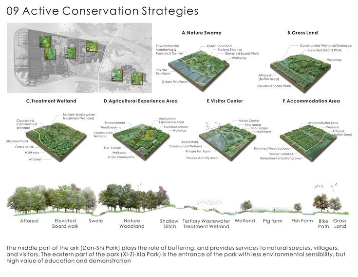 Landscape Architecture Plan Drawing 446 best landscape architecture drawings images on pinterest