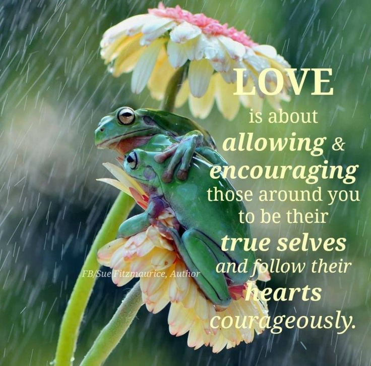 Love is about allowing and encouraging