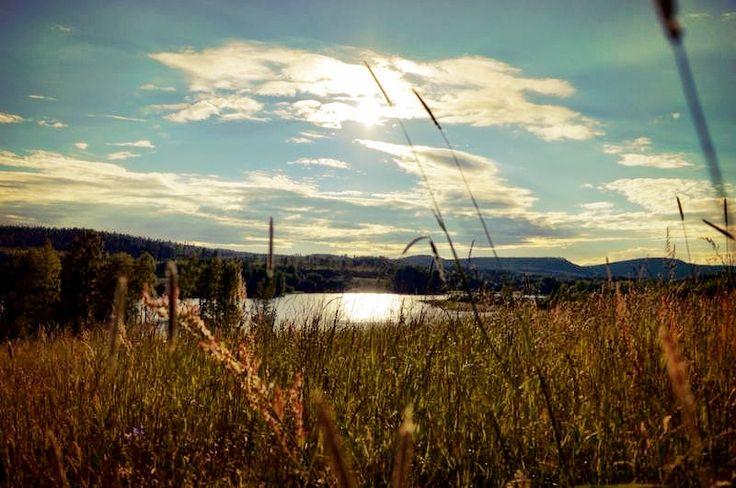 Hälsingland henningesjön