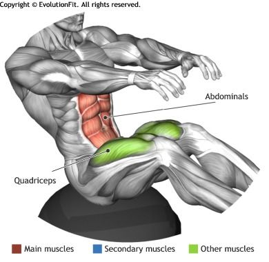 ABDOMINALS -  LEG PULL IN ON BOSU