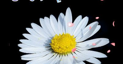 Gif Blogu 'dan ücretsiz indirebilirsiniz... ayetli gif, ayetli hareketli resim, cuma gif , cuma hareketli resim