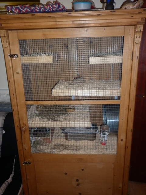degu cage in an old converted cabinet