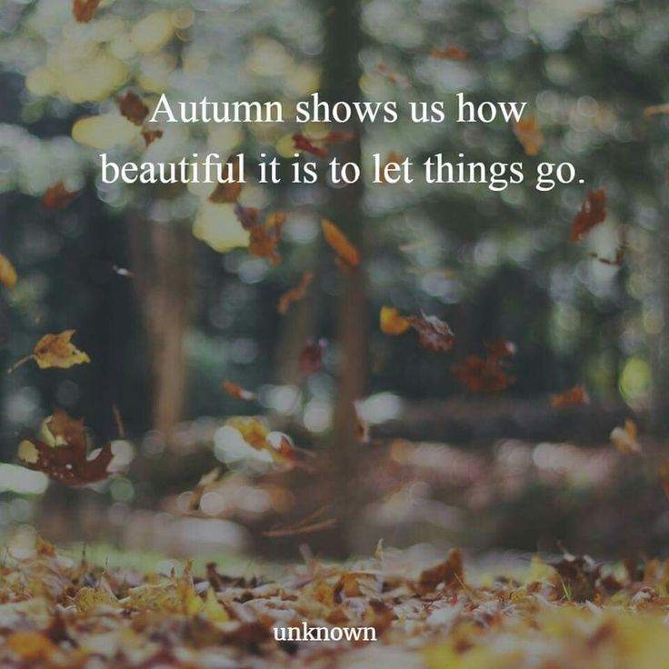 Autumn shows us how beautiful it is to let things go.