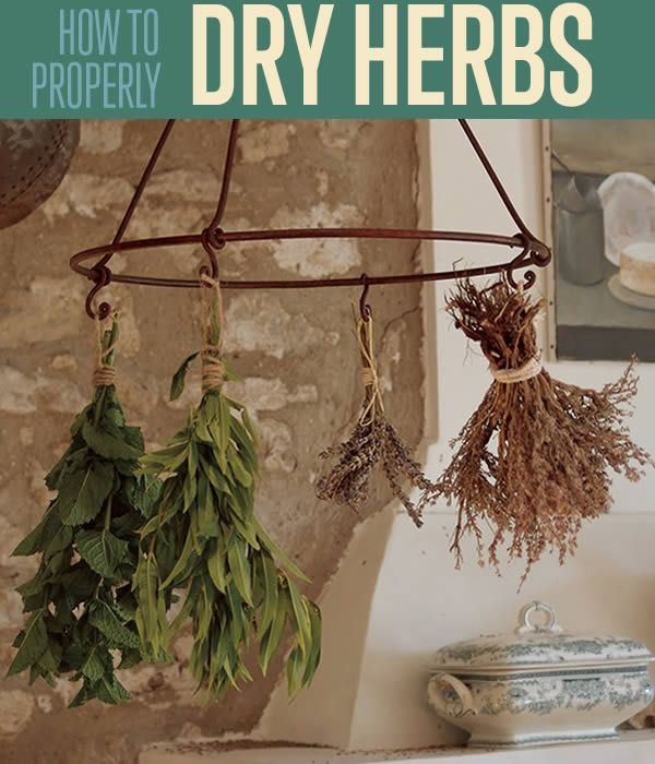 DIYready.com is bringing you Tips and Tricks For Drying Your Own Herbs | How to Dry Herbs | diyready.com/herb-garden-how-to-dry/