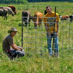 Potential carbon sequestration and forage gains with management-intensive rotational grazing (Research Brief #95)