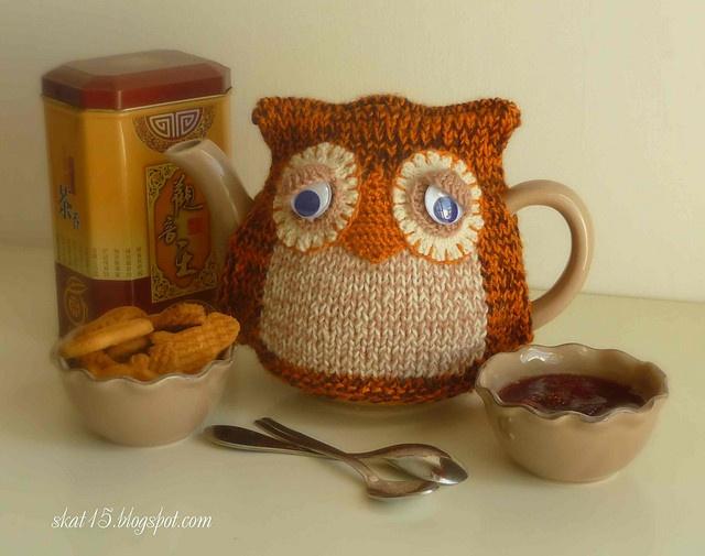 google-eyed owl tea pot cozy