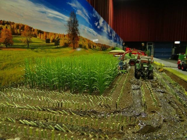 JUWEELA 50x GREEN MAIZE PLANTS 1:32/1:35 SCALE DIORAMA FARM 23288 | eBay