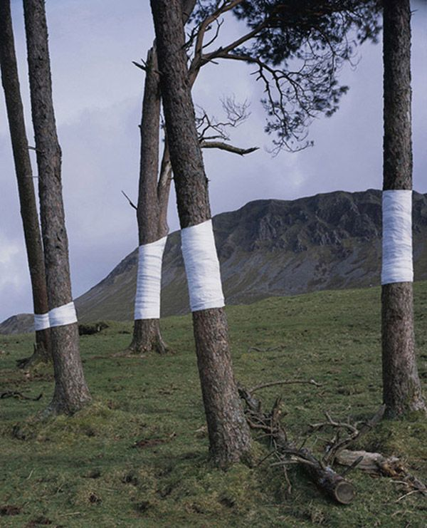 Amazing installation created using perspective by Zander Olsen via Visual News