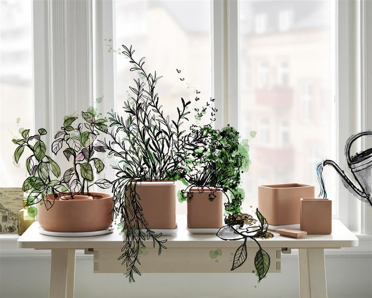 It's like the plants are watering themselves. ANVÄNDBAR self-watering plant pots. The green life's all about getting back to basics. So let your plants decide when they're thirsty. And start to live a little kinder. #Livealittlekinder #IKEAcollections #ANVÄNDBAR #IKEA #greenhomes #selfwatering