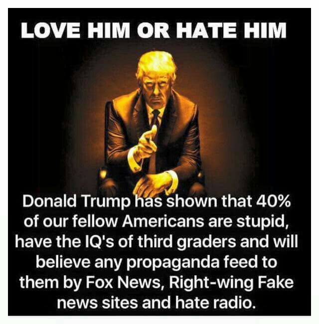 People Magazine Trump Quote 1998: 114 Best Heil Trump Or Hitler, Trump Supporters Images On