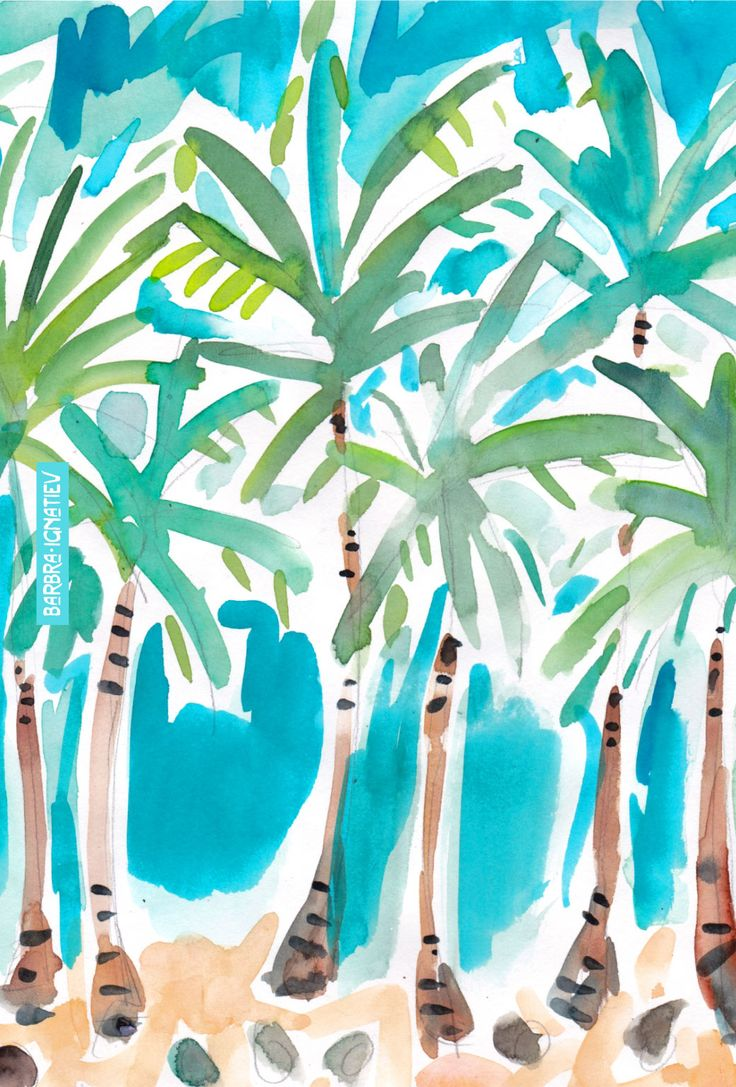 daily color 81 palm trees and blue sky barbarian by
