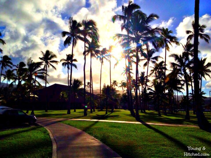 Beautiful Sun Over BYU Hawaii Campus In Laie