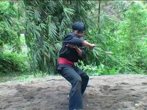 Pencak Silat ---> makes you believe in pain