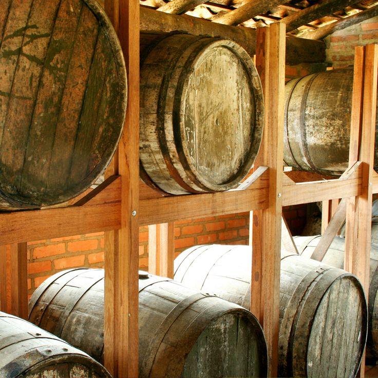 ALAMBIQUES de cachaça • Processo de envelhecimento da cachaça artesanal que aprimora a qualidade de sabor e aroma da bebida.