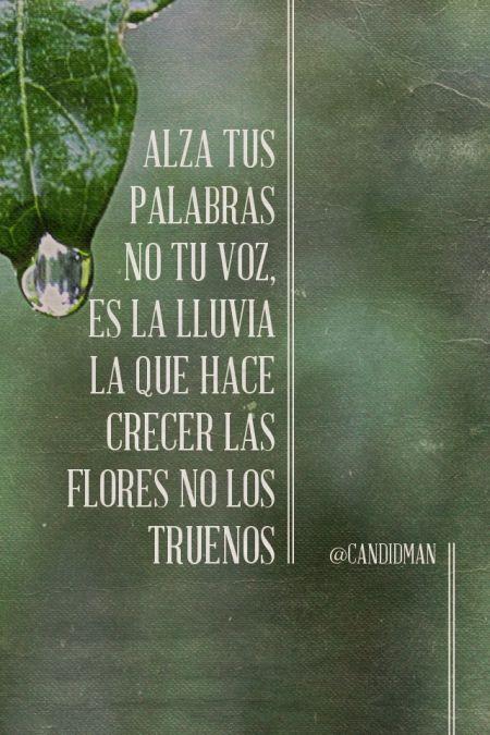 """""""Alza tus palabras no tu voz, es la lluvia la que hace crecer las flores no los truenos"""". #Citas #Frases @candidman"""