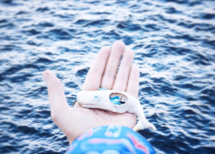 sperm whale, Moby Dick, polymer clay jewelry, polymer clay pendant  hand made, polymerclay