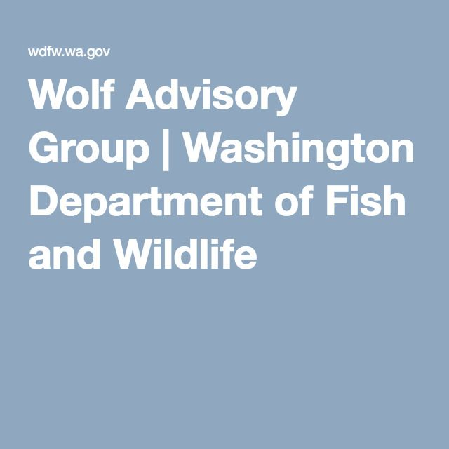 Wolf advisory group washington department of fish and for Department of fish and wildlife washington
