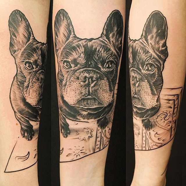French bulldog by kreator.ds.tattoo