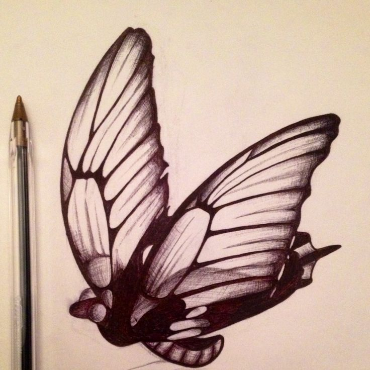 My first ever butterfly drawing :)