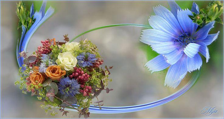 Mija virágai