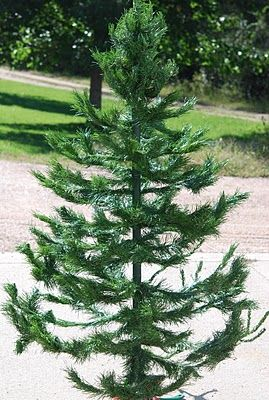 How to take an ugly old Christmas tree and make it into a Primitive Tree!