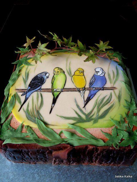 Parakeet cake - Torta pre chovateľa anduliek
