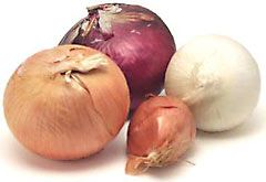 group of several varieties of onion - descriptions & uses