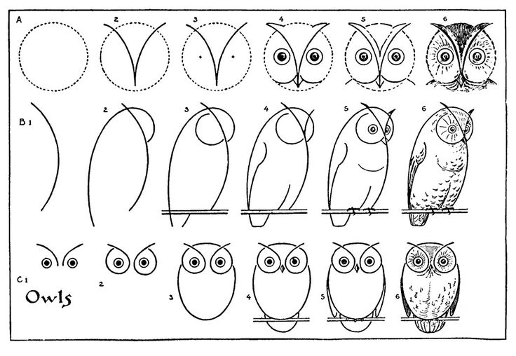 *The Graphics Fairy LLC*: Kids Vintage Printable - Draw Some Owls