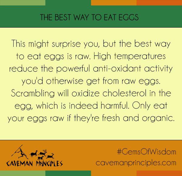 Do you eat raw eggs?  http://cavemanprinciples.com  #CavemanPrinciples #cholesterol #eggs