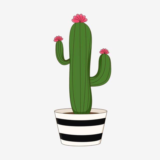 Gambar Cute Kartun Kaktus Kaktus Berbunga Comel Kartun Kaktus Png Dan Vektor Untuk Muat Turun Percuma Bunga Kaktus Poster Bunga Tanaman Kaktus