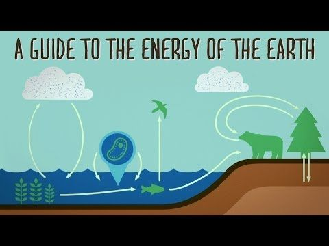 Here's a terrific video on the many ways in which energy cycles through our planet, from the sun to our food chain to electricity and beyond.