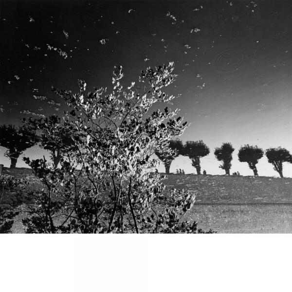 """Mimmo JODICE, né en 1934, SULLY SUR LOIRE, 1984. Epreuve[...], mis en vente lors de la vente """"Photographies d'Artistes"""" à Lucas Casa d'Aste   Auction.fr"""
